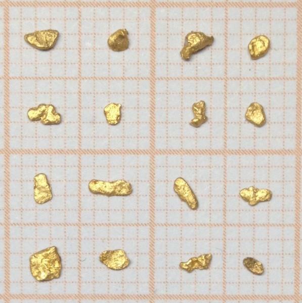 16 Stück Waschgold Flitter - Naturgold Flitter - Goldflitter 0,140 Gramm