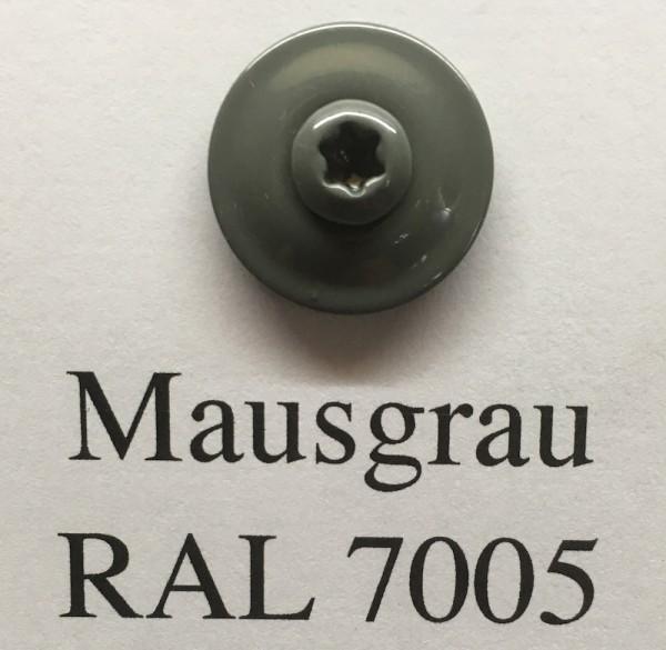 50 Spenglerschrauben mausgrau 4,5 x 35 mm (RAL 7005)