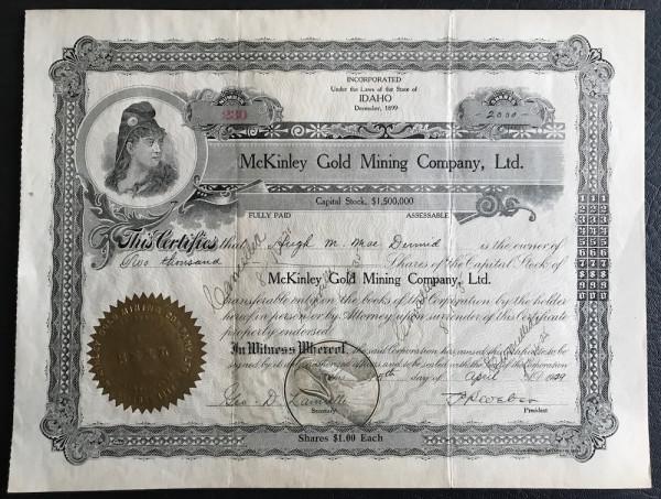 McKinley Gold Mining